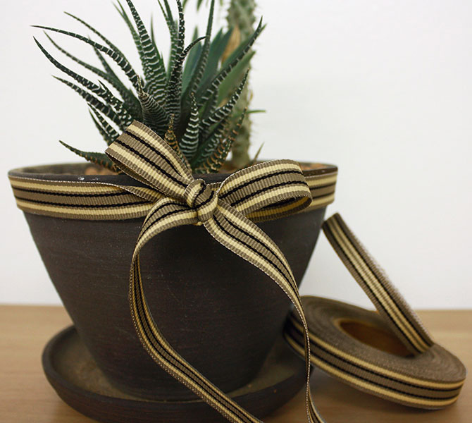 Weavewell Ribbons - Pot plant
